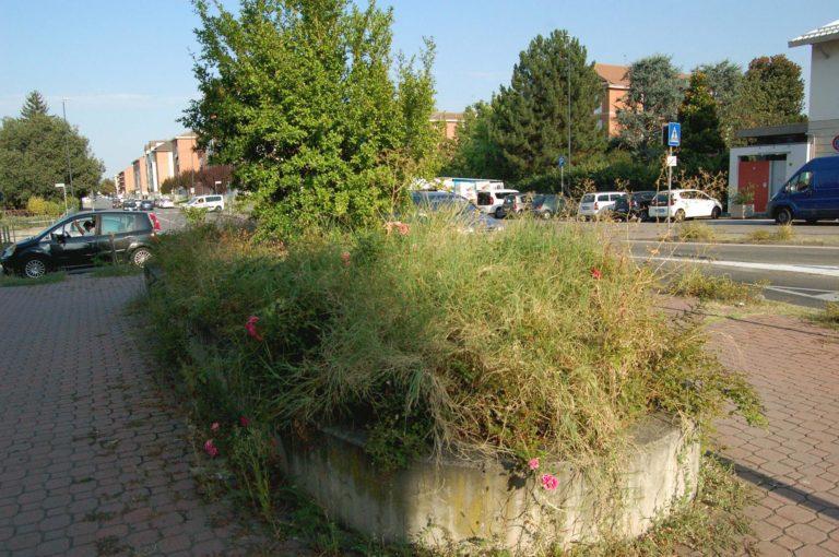"""Ambiente Asti: """"In città un nuovo metodo per risolvere il problema della manutenzione del verde pubblico"""""""