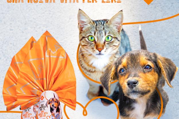 Gli animali non sono un lusso: Lav in piazza per un fisco amico dei quattrozampe