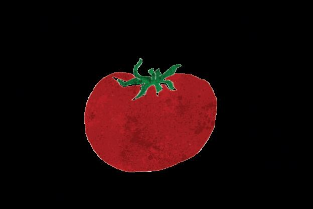 Da Rava e Fava Tomato Revolution: la filiera etica del pomodoro che coltiva diritti e futuro