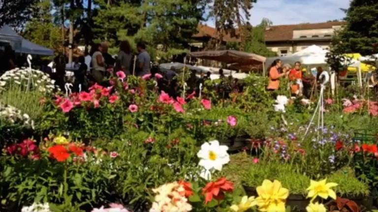 Fiori & Vini spegne 25 candeline. Fine settimana fra enogastronomia e cultura a Carignano