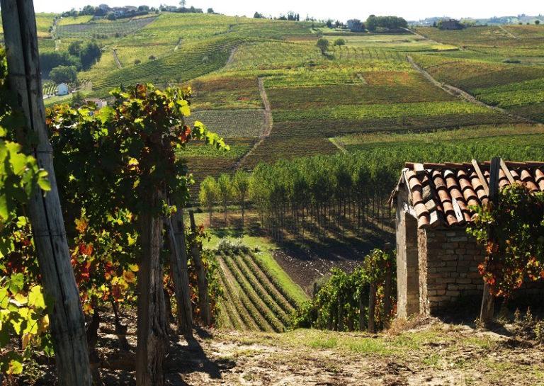 Un italiano su quattro che andrà in vacanza pensa al Piemonte