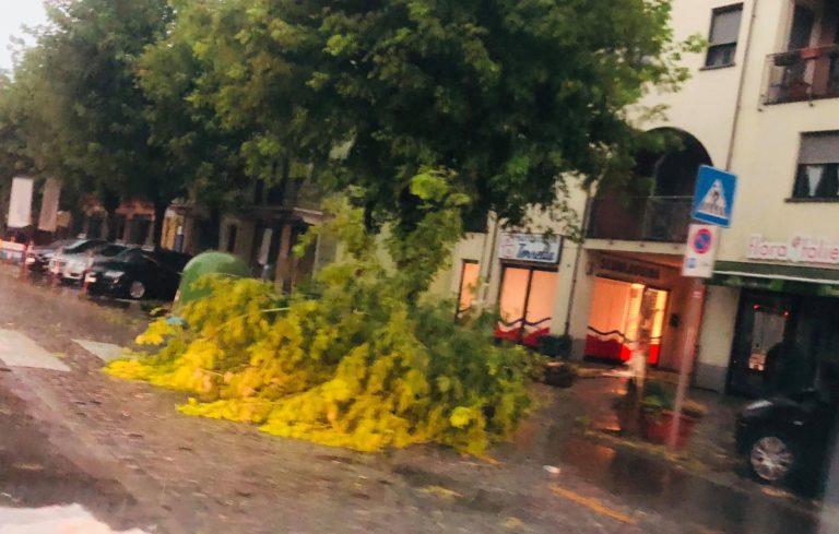 Violento temporale sull'Astigiano: è allerta gialla dell'Arpa