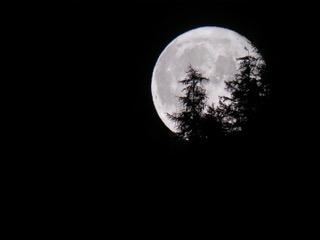 A Vezzolano d'Asti l'ultimo Appuntamento del Festival Anima Vagans dedicato all'Eclissi di Luna