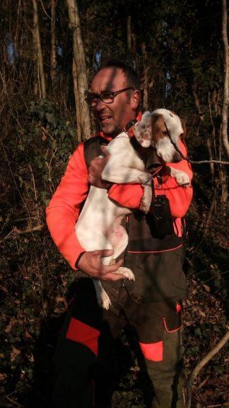 Cane precipita in un pozzo: salvato dai vigili del fuoco
