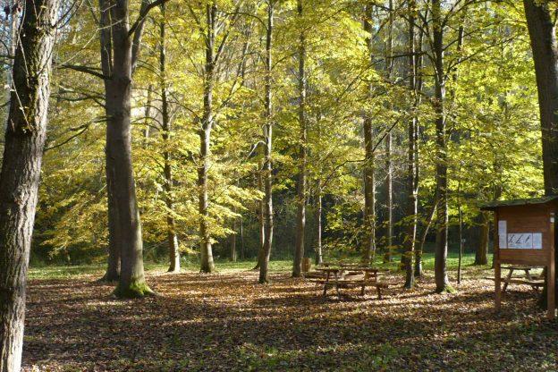 Il 1° marzo si presenta l'Osservatorio per la sostenibilità dell'Astigiano (Osa)