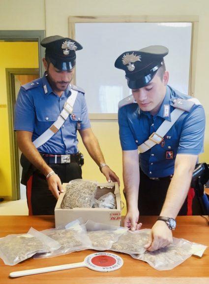 Stanza segreta per la coltivazione di marijuana scoperta dai carabinieri di San Damiano d'Asti