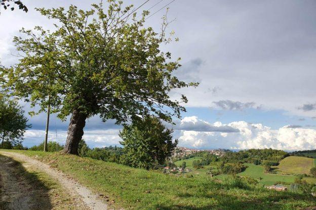 Camminare seguendo i segni della natura