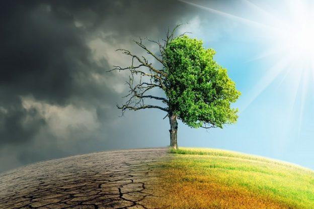Convegno del Pd sul cambiamento climatico e sviluppo sostenibile