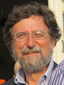 "Paolo Vineis: ""In Piemonte indice contagio sotto 0,5"""