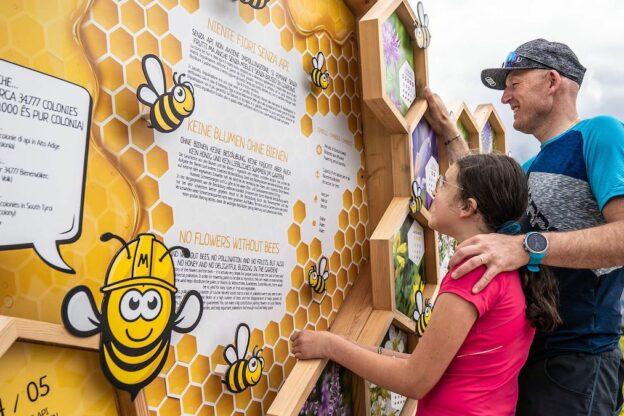 Nasce Beetourism, la via del miele dell'Astigiano