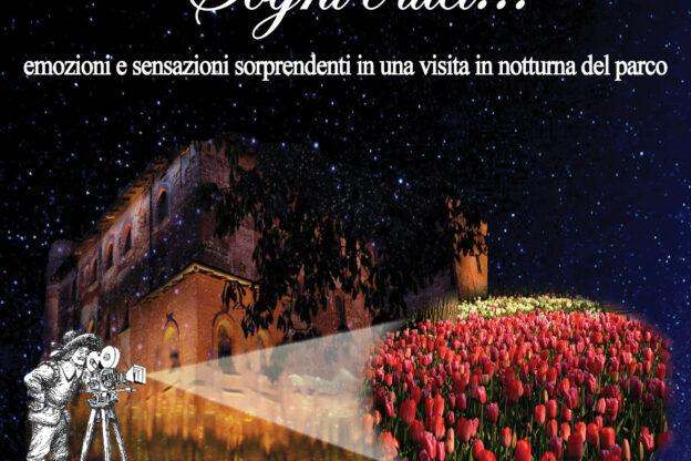 """""""Sogni e luci"""" a Pralormo"""