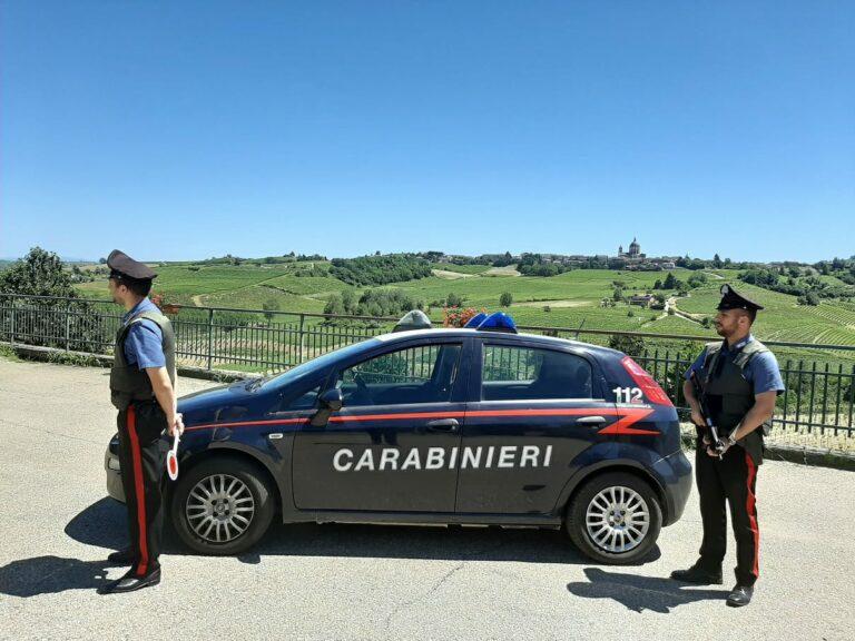 Vendemmia 2020: il bilancio di un mese di controlli dei carabinieri