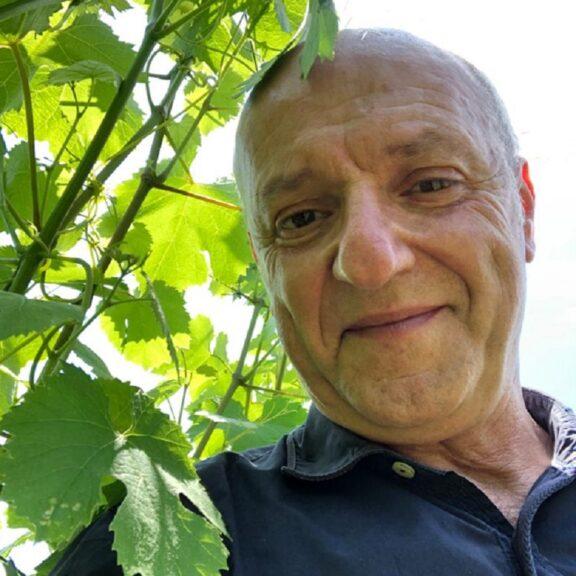 Il 2020 del mondo del vino visto da Francesco Iacono, direttore generale dell'Onav