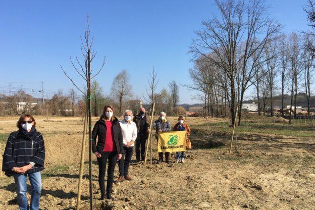 Novantanove alberi a Villafranca per rilanciare il parco delle Verne