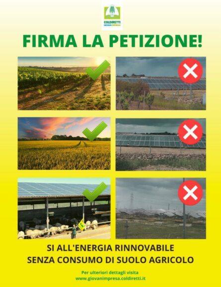 """Coldiretti: al via la petizione contro i pannelli """"mangia suolo"""""""